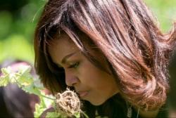 Michelle Obama cements garden legacy