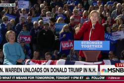 Warren breathes fire beside Clinton in NH