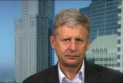 Gary Johnson hopes to be Chicago Cubs of...