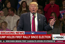 Trump reprises campaign with victory rally
