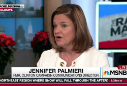 Palmieri backs elector access to Russia intel