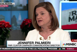 Palmieri: Comey letter 'one thing too many'
