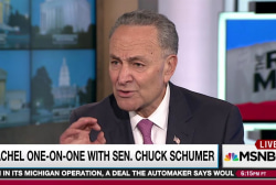 Schumer predicts GOP Obamacare repeal 'chaos'