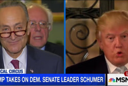 Trump: Dems 'lead by head clown' Schumer