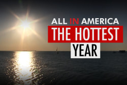 The Hottest Year