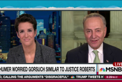 Schumer: Democrats will hold SCOTUS bulwark