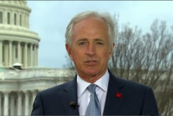 GOP senator wonders: Can the WH stabilize...