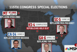 Special elections set stage for 2018