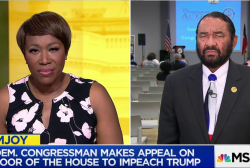Rep. Al Green: Not even president is above...