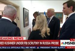 Family ties could upset Trump probe defense