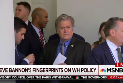 Joe: Steve Bannon is now the president