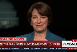Senate Dem on influencing investigations:...