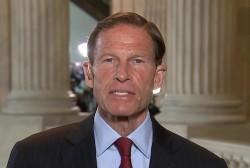 Senator says Sessions should resign if...