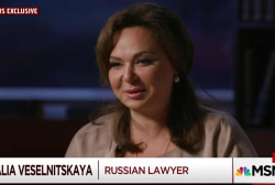 Lawyer who met with Trump Jr. speaks out