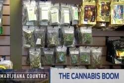 Marijuana sales boosts Colorado's economy