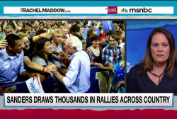 Sanders grassroots bearing fruit in new poll