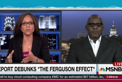 Report debunks 'Ferguson effect'