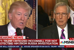 Trump attacked McConnell on Russia probe: NYT