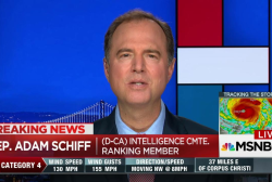 Schiff: Trump abuses pardon as political tool