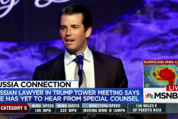 Russian lawyer at center of Trump Tower...
