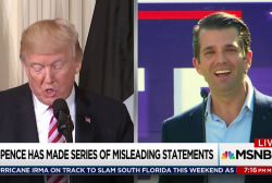 New revelations in Trump Jr Senate interview