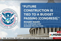 Border official to MSNBC: Wall...