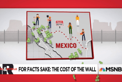 What is the Real Cost of Trump's Wall?