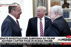 How central is Priebus in the Mueller...