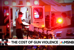The Economic Toll of Gun Violence