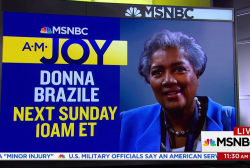 What the Donna Brazile book controversy...