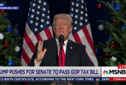 Trump promises not to veto his own tax bill