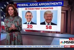 Trump fills record number of judicial...