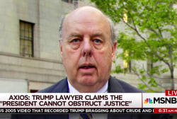 Trump's lawyer puts forth 'novel theory'