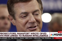 'What was he thinking?' Manafort worked on...