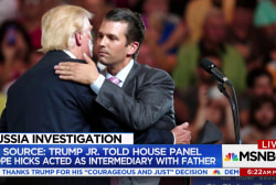 Why Donald Trump Jr. may have cited...
