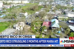 Puerto Rico Gov. orders recount of hurricane deaths