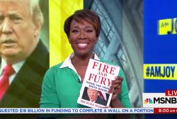 'Fire and Fury' book sparks Trump tweetstorm