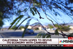 California town hopes to reverse fortunes with cannabis