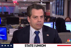 Anthony Scaramucci sizes up Trump voters' views on immigrants