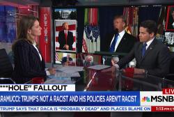 Scaramucci: Trump is 'neurologically sound'