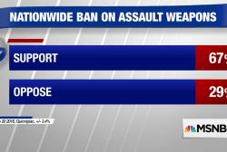 Poll: 67% support assault weapons ban