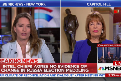 Rep. Speier: We need more election oversight