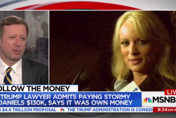 Stormy Daniels payoff 'looks related' to campaign: WSJ reporter