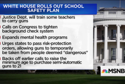 NEA head: WH school safety plan 'doesn't close loopholes'