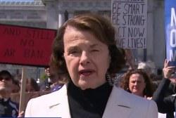 Sen. Feinstein: We need to pass an assault weapons ban bill in Congress