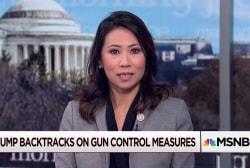 Trump gun proposal falls way short: Congresswoman