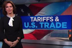 Fmr. Trump associate downplays impact of Trump's proposed tariffs