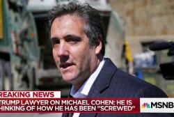 Trump's Russia lawyer: Mueller sidelined key prosecutor from probe