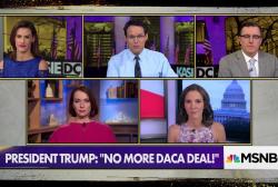 Trump's DACA tweets are 'pure Stephen Miller'