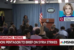 Scope of Syria strikes hotly debated in White House